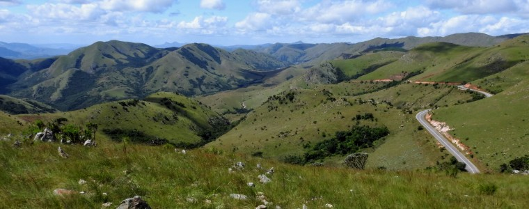 Highveld Grassland